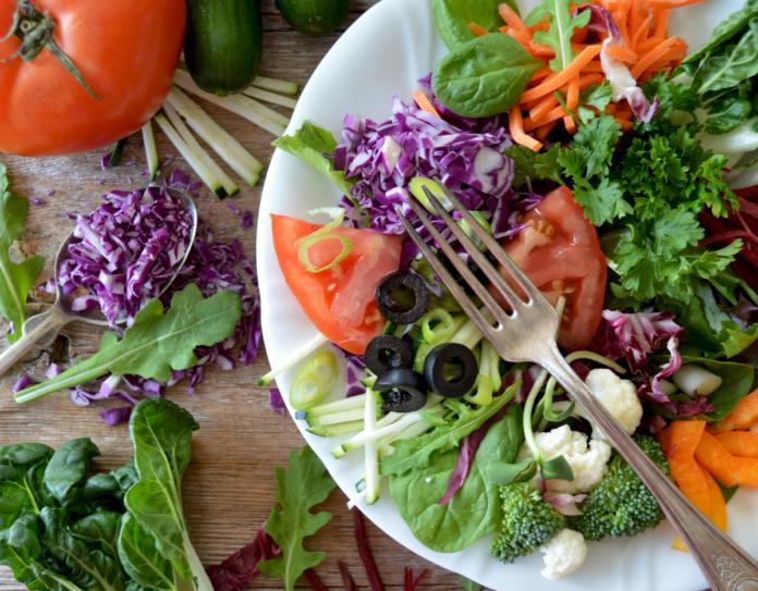 Salads Plus in Boca Raton